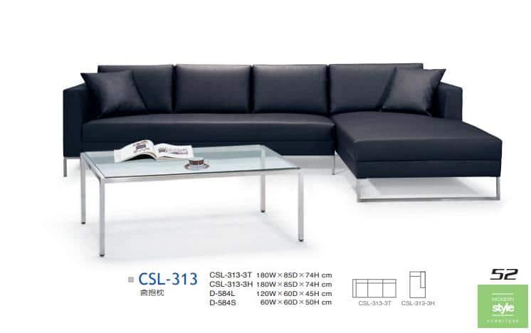 CSL-313